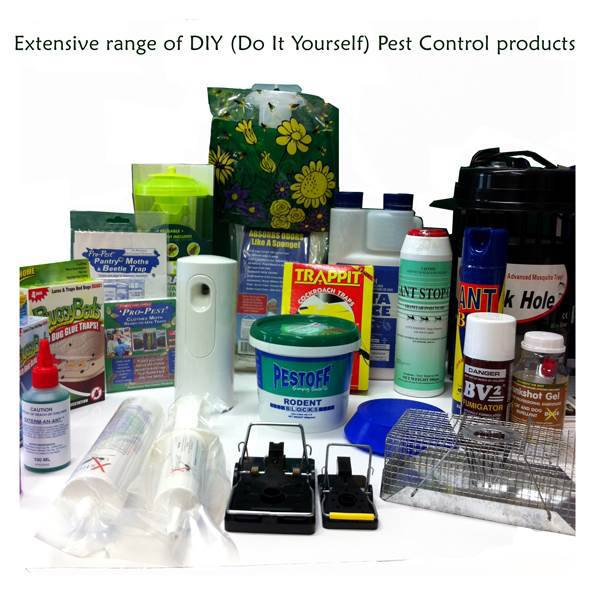DIY Pest Control NZ